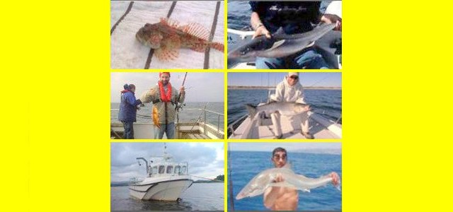 Donegalbaycharters can cater for all occasions. 2 Hr Mackrel trips@€25p/p. Half days fishing @€35p/p. Full days fishing @€50p/p. Rods and reels are included in the price. A full selection of...